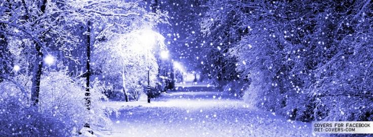 Image result for a winter wonderland