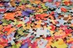 puzzle_pieces300x199